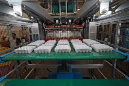 «На экспорт»: в регионе запустили вторую линию производства литой бумажной тары