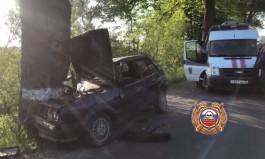 Под Зеленоградском водитель «Фольксвагена» без прав врезался в дерево: погиб пассажир