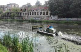 Кропоткин: Есть опасения, что ремонт Нижнего озера в Калининграде уйдёт в зиму