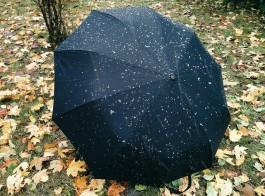 В Калининграде прошёл первый мокрый снег
