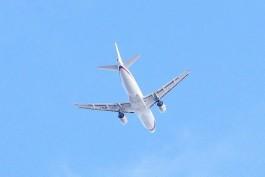 ТАСС: Минтранс временно запретил российским авиакомпаниям выполнять регулярные рейсы в Турцию