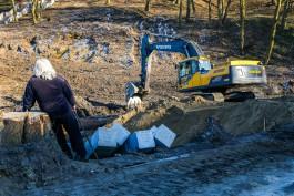 «Пионерский цирюльник»: как вырубают парковую зону для строительства дороги к «замороженному» порту