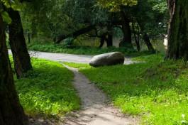 В центре Гурьевска хотят создать парк с поющими чашами и каменными арфами
