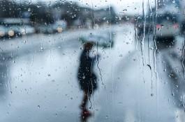 На выходных в Калининградской области ожидается облачная погода и небольшой дождь
