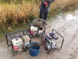 В Зеленоградском округе полицейские задержали четверых копателей янтаря