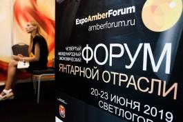 На янтарном форуме в Светлогорске продали с торгов 14 крупных самородков