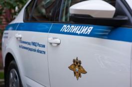 Калининградцы помогли полиции разыскать похитителя женских сумок