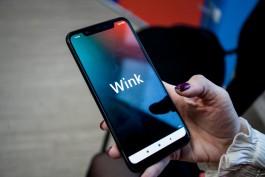 В Калининградской области в четыре раза возросло число пользователей мультимедийной платформы Wink