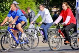 Мельников: Если наших велосипедистов выпустить в Голландии, половина пешеходов будет в больнице