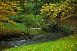Власти предупреждают о зелёной воде в калининградских водоёмах