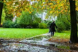 Синоптики прогнозируют прохладную и дождливую неделю в Калининградской области