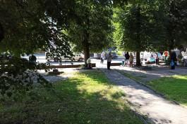 В Калининграде ищут подрядчика для благоустройства ещё одного сквера у «Киноленда»