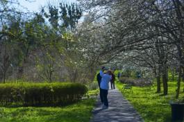 В Ботаническом саду БФУ имени Канта меняется режим работы