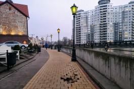На набережной Рыбной деревни в Калининграде провалился тротуар