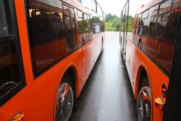 Два пассажира получили травмы из-за резких манёвров водителей автобусов в Калининграде