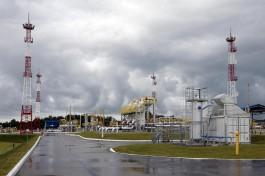 В Калининградской области начали строить фундамент регазификационного терминала