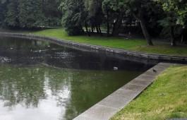 «Такая пыльца»: в мэрии Калининграда прокомментировали «мазутное» пятно на Верхнем озере
