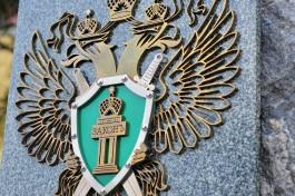 Прокуратура начала проверку после обрушения смотровой площадки в Краснолесье