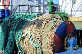 Минсельхоз предлагает ужесточить штрафы за незаконную добычу рыбы