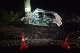 В Неманском округе «Фольксваген» врезался в дерево и загорелся: водитель погиб