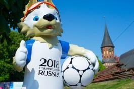 В Рыбной деревне и на острове Канта в Калининграде установили фигуры волка Забиваки