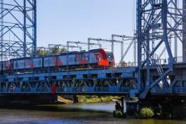 При строительстве автодублёра двухъярусного моста в Калининграде вырубят 1086 деревьев