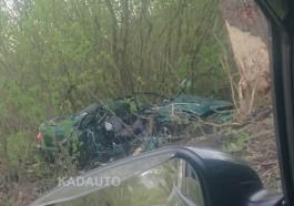 На улице Летней в Калининграде «Ауди» смяло после столкновения с деревом: пострадал водитель
