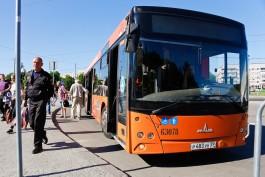 Мэрия: Пять дополнительных автобусов будут вывозить с Острова зрителей чемпионата фейерверков
