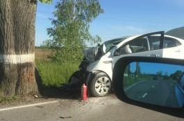 Под Гурьевском «Киа» врезалась в дерево: погиб 49-летний водитель