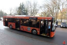 В бюджет Калининграда заложили деньги на украшение автобусов символикой ЧМ-2018
