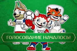 «Кот, волк и тигр в скафандре»: FIFA презентовала предварительные талисманы ЧМ-2018 по футболу