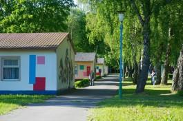 Правительство: Из-за углублённого медобследования часть смен в детских лагерях региона сдвигается