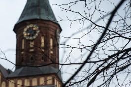 В понедельник Калининград побил температурный рекорд 2002 года