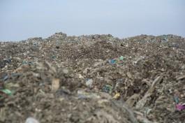 Росприроднадзор установил порчу земли из-за сброса фильтрата со свалки под Гусевом