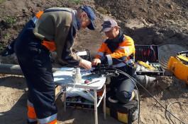 «Ростелеком»: В Калининградской области стали чаще обрывать линии связи