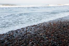 Польша планирует построить атомную электростанцию на берегу Балтийского моря