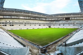 На поле стадиона к ЧМ-2018 в Калининграде взошла трава