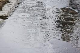 Метеорологи прогнозируют в Калининградской области дождливые выходные