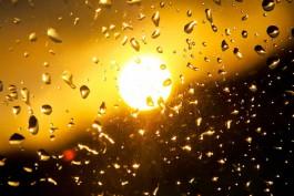 Синоптики прогнозируют дождливую рабочую неделю в регионе и потепление до +29°С