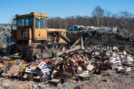 С момента закрытия границ в Калининградской области уничтожили почти 13 тонн санкционки