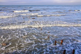 Власти готовят проект берегоукрепления западной части Зеленоградска протяжённостью 1,6 километра