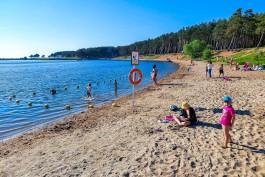 «Вода под запретом»: как калининградцы отдыхают на новом пляже у СНТ «Мечта»