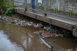 Власти Калининграда закупают решётки для очистки рек и каналов от мусора