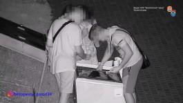 В Калининграде задержали подростков, обокравших холодильник с мороженым в Макс-Ашманн-парке