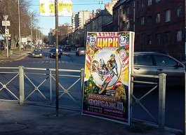 Власти потребовали от привозного цирка убрать незаконную рекламу с улиц Калининграда