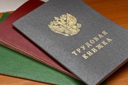 Калининградские работодатели признались, что их раздражают соискатели-отличники