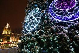 На Рождество в Калининграде запустят ночные автобусы