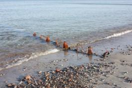 В нацпарке «Куршская коса» рассказали об опасности купания на одном из участков Балтийского моря