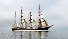 В конце апреля барк «Седов» отправится в плавание из Калининграда в Германию