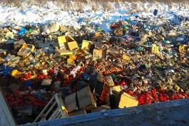 На полигоне в Калининградской области уничтожили более 20 тонн овощей и фруктов
